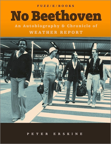 no-beethoven-book-cover